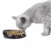 Ξηρά Τροφή Γάτας