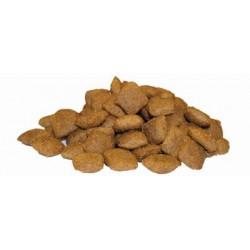 FLATAZOR JUNIOR MAXI Ξηρά Τροφή Σκύλου
