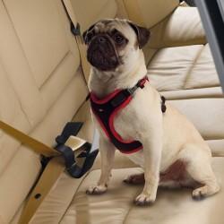 FERPLAST ΖΩΝΗ ΑΣΦΑΛΕΙΑΣ- DOG TRAVEL  BELT Τσάντες Μεταφοράς- Αξεσουάρ Ταξιδιού
