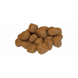FLATAZOR ADULT PRESTIGE MAXI Ξηρά Τροφή Σκύλου
