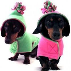 Ρούχα Σκύλου