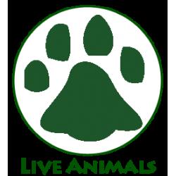 Τα ζώα μας