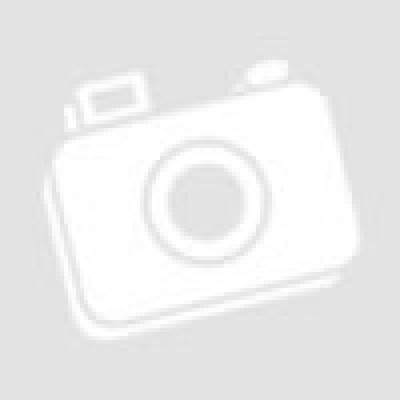 ΚΟΝΣΕΡΒΑ ΣΚΥΛΟΥ RINTI - ΚΑΡΔΙΕΣ ΠΟΥΛΕΡΙΚΩΝ Υγρή τροφή- Κονσέρβες σκύλου